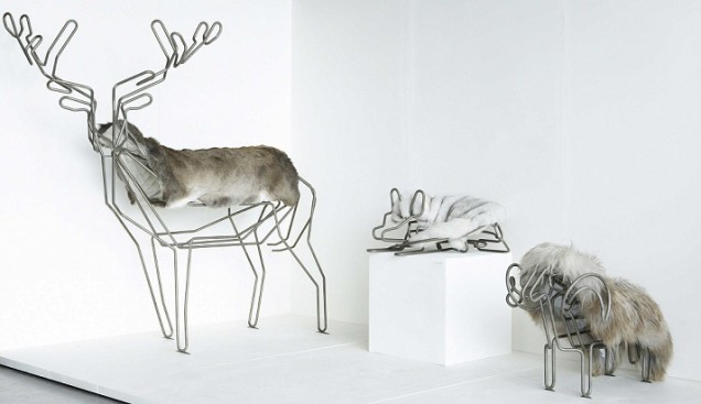 Domestic Animals Guus Van Leeuwen